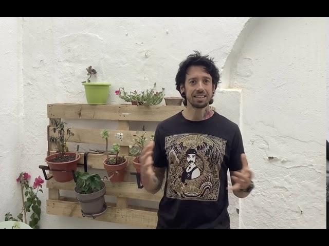 Presentación David Gálvez Ruiz | Advisor StartupLabs Spain