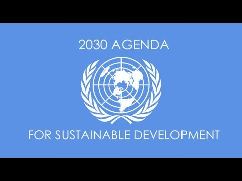 TRUMP'S REAL ID NATIONAL ID CARD IS PART OF AGENDA 2030 IMPLEMENTATION