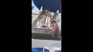 Ева танцует в отеле на Кипре