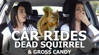 Car Rides - Dead Squirrel & Gross Candy - Merrell Twins