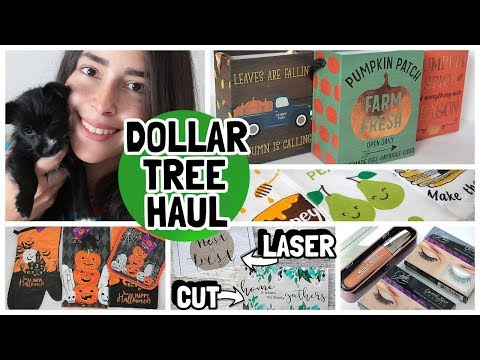 DOLLAR TREE HAUL 2019 NEW FINDS LASER CUT WALL DECOR + NEW PUPPY