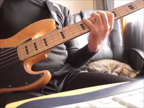 don kikas - amor de ninguem (bass)