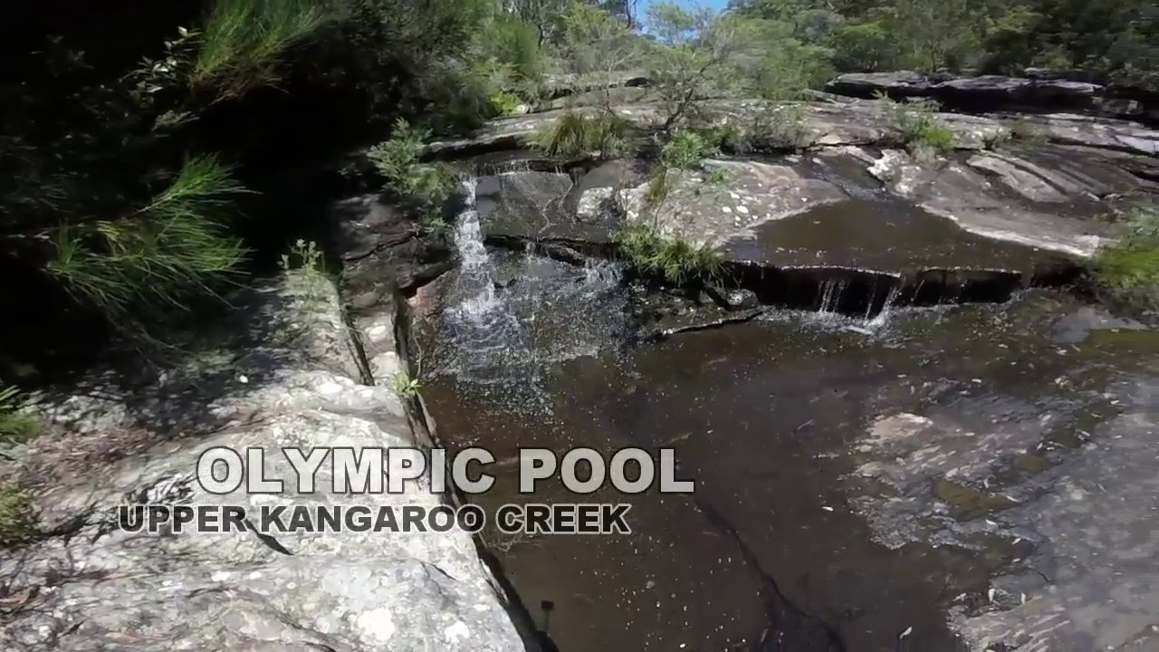 Sydney Wild Swimming Adventures Olympic Pool Royal National Park Youtube