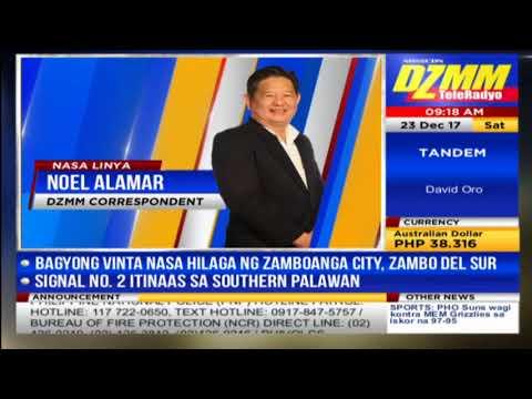 Barangay councilor sa Palawan nilapa ng buwaya