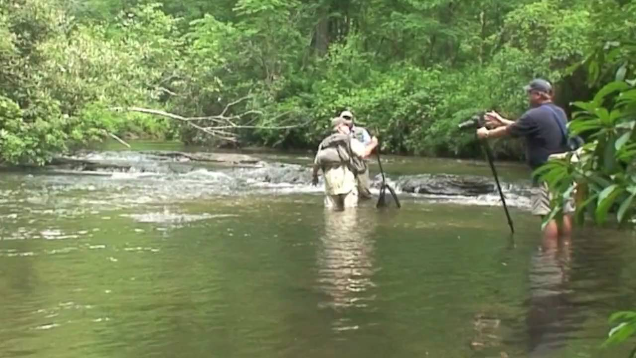 The west fork fishing cabin lake toxaway nc youtube for Nc wildlife fishing license