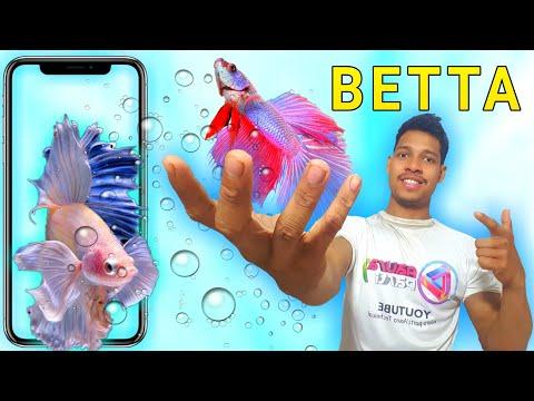 Betta Fish Live Wallpaper/Aaura Technical