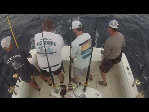 Offshore Fishing For Yellowfin Tuna And Mahi, Virginia Beach
