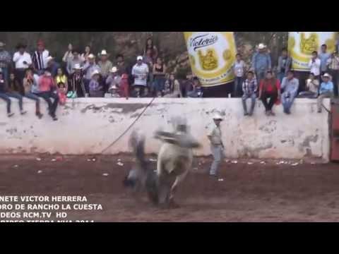 monta jinete victor herrera del fuerte toro R.la cuesta videos rcm.tv  HD  jaripeo tierra nva  sep