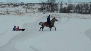 Horsedrawn Toboggan Ride