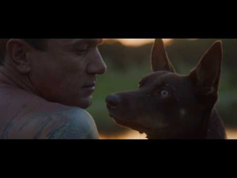 Shannon Noll - Southern Sky (Official Music Video)