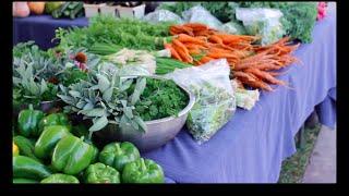 Purdue Farmers Market