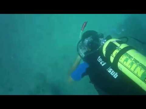 Scuba Diving / Deep Blue Sea / Lebanon
