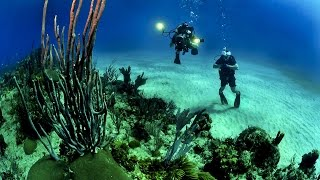 World s Largest Coral Reef Location, The Great Barrier Reef, Queensland, Australia