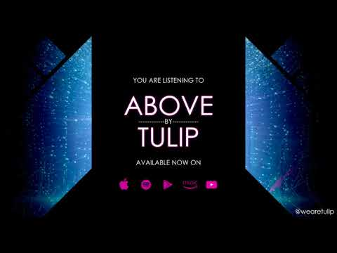 TULIP - Above (Official Audio)