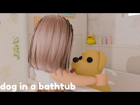 ~Dog In A Bath Tub~ (Roblox GFX)