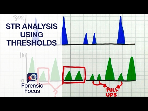 Setting Thresholds for Quality STR Results - Forensic Focus #5