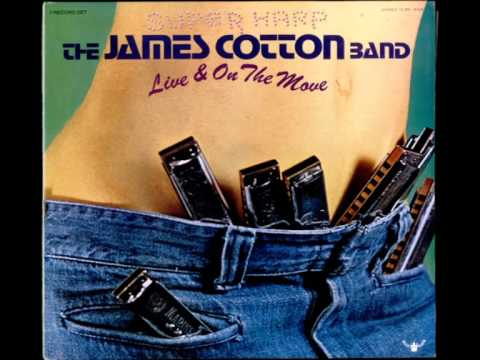 James Cotton - Got My Mojo Working