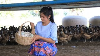 Go to Duck farming in my village to find some eggs for my recipe - Prepare by countryside life TV.