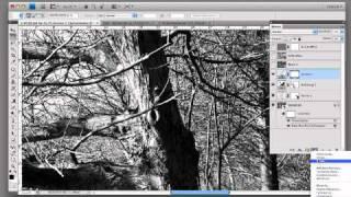 einfache Konvertierung Farbbild in S-W Bild.mp4