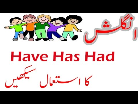 How to Use have Has had been Learn in Urdu Hindi