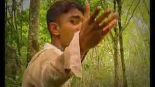 Wasanthaye Sitha Saluna