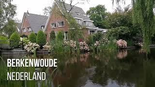 Berkenwoude Nederland Hollanda