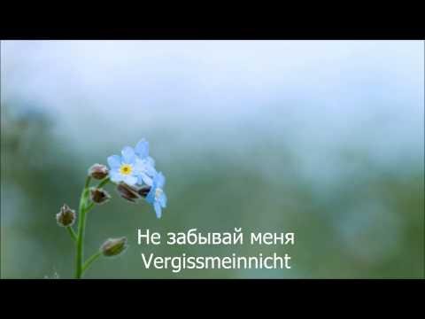 Eisbrecher - Vergissmeinnicht HD Lyrics Текст песни и перевод