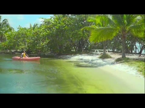 Kayaking in Biscayne Bay, Miami, Florida