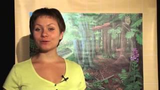 """Природные сообщества: Водоема,Леса,Поля,Луга ООО""""Архимед"""""""