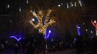 Рождественская иллюминация в Херсоне