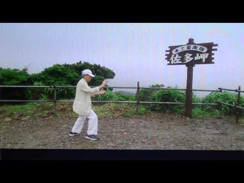 楊名時太極拳、佐々木博之師範の演舞posted by dravidico8l