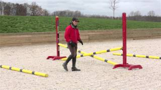 Rushing Fences: How to school a horse that rushes at jumps
