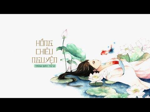 [Vietsub + Kara] Hồng Chiêu Nguyện (红昭愿) - Từ Vi