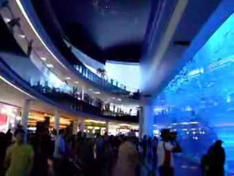 Dubai Aquarium (Guinness World Record)