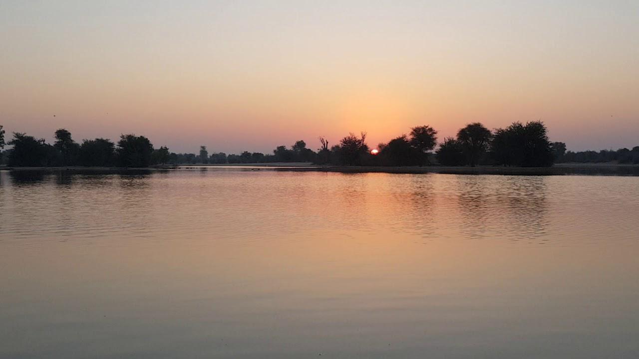 Sunrise in Al Qudra Lake - YouTube