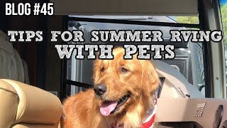 RV Blog - Tips For Summer RVing With Pets