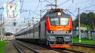 Поезда для детей. Железнодорожный транспорт обучающее видео