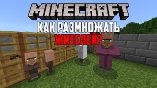 как Размножать Жителей в Minecraft PE 1.5?