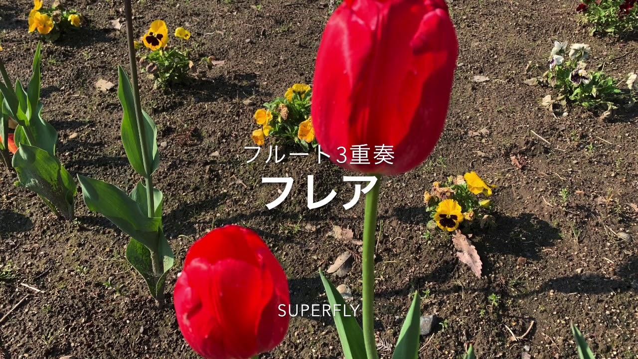 フレア/Superfly/フルート3重奏