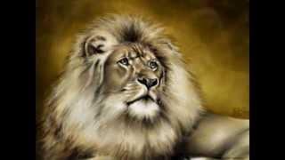 Самые сильные звери
