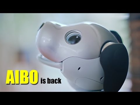 AIBO is Back - The Original Cute Robot Dog from Sony