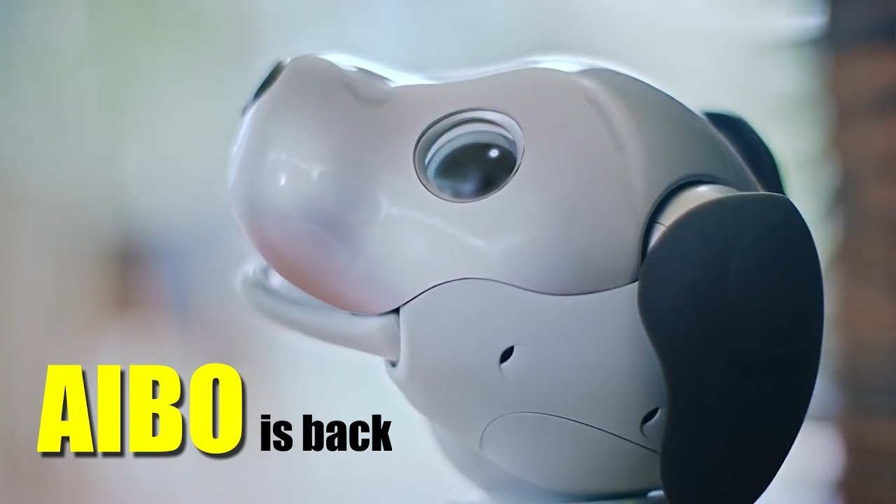 AIBO is Back - The Original Cute Robot Dog from Sony - YouTube