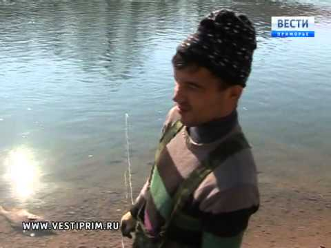 видео: В Ольгинском районе продолжается операция по защите нереста лососевых пород рыб