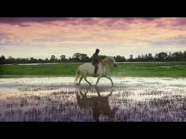 Ciao viaggiatori un breve video di Turismo FVG