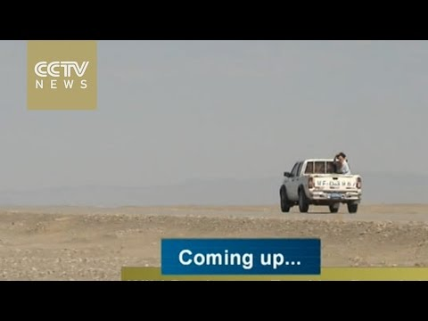 Bumpy adventure: tracking rare animals in wild Dunhuang