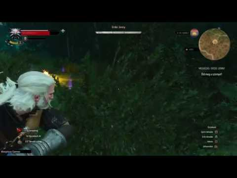 The Witcher 3 Wild Hunt magyar felirattal Part22