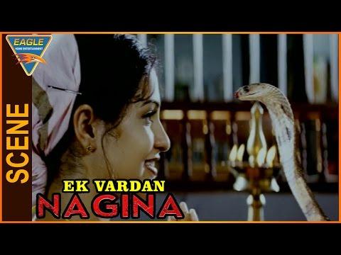 Ek Vardaan Nagina Hindi Dubbed Movie    Raasi Prayer To Snake    Eagle Hindi Movies