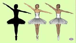 This video showes a spinning dancer (or any silhouette)  can rotate both ways. Spinning dancer.