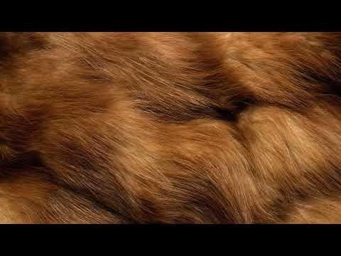 Как убрать запах с меха в домашних условиях