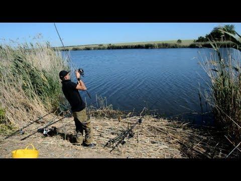Добренькая рыбалка! Где ловить рыбу в Краснодарском Крае? - YouTube